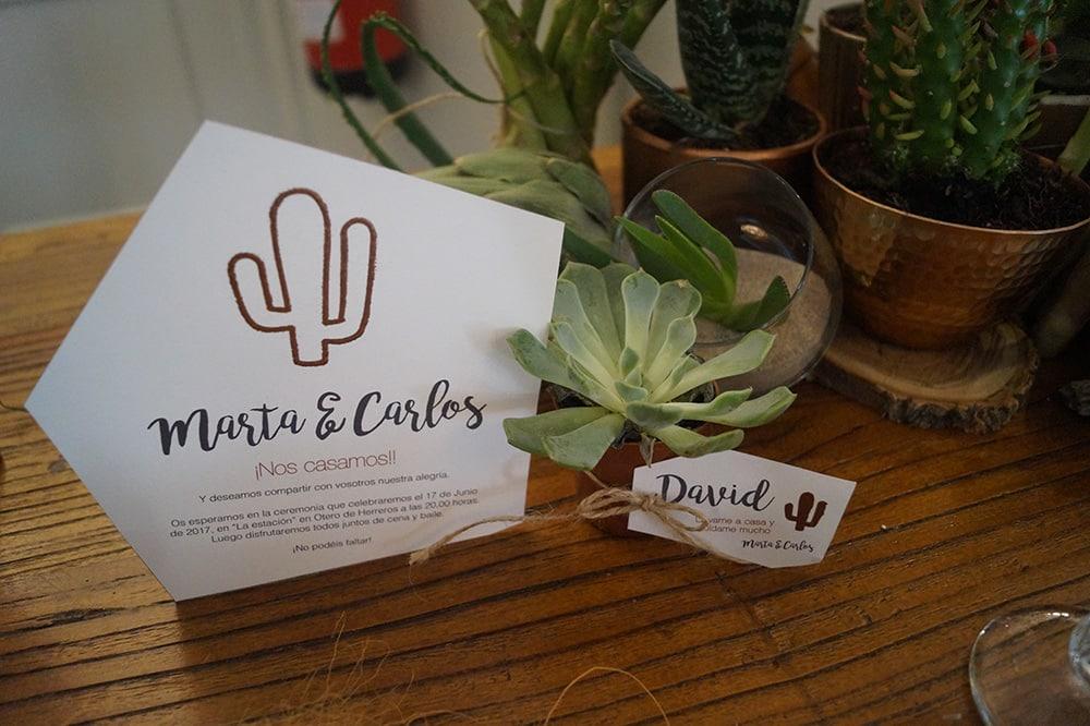 boda cactus detalle mesa feria cactus y crasas mi boda rocks