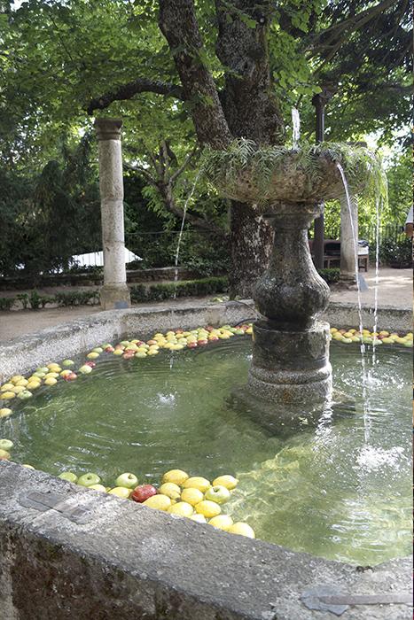 Fuente Ceremonia Boda Palacio CarlosIII Decoración frutal